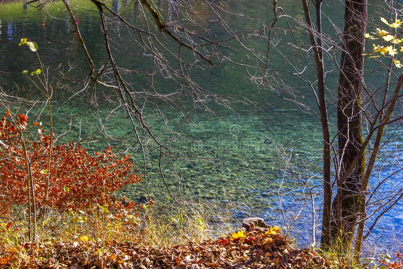 Berg sjö med klart vatten runt om höstskogen i fjällängarna fotografering för bildbyråer