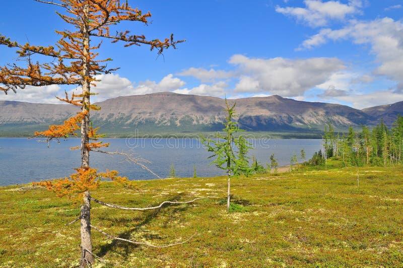 Berg sjö på den Putorana platån arkivfoton