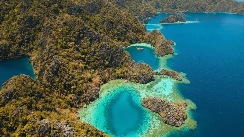 Berg sjöbarracuda på en tropisk ö, Filippinerna, Coron, Palawan arkivfoton