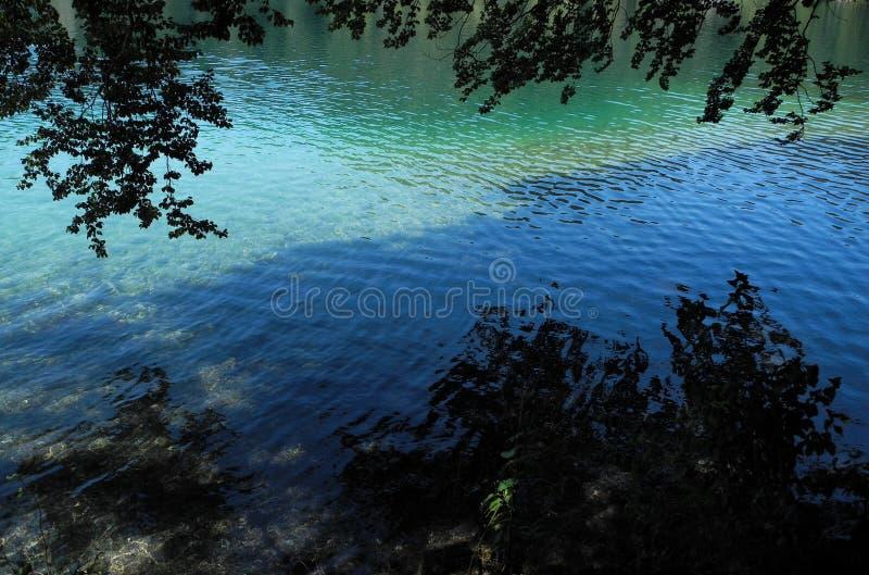 Berg sjön Alpsee med blå och grön turkos färgade djup yttersida för rent vatten royaltyfri bild
