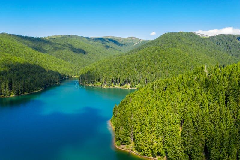 Berg sj? med turkosvatten och gr?na tr?d Reflexion i vattnet Härligt sommarlandskap med berg, skog och royaltyfri bild