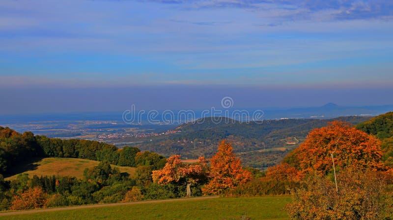 Berg skog, blå himmel arkivbild