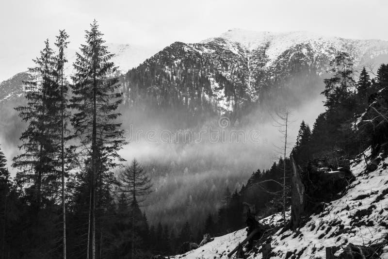 Berg in Slowakije, Hoge Tatras royalty-vrije stock afbeelding