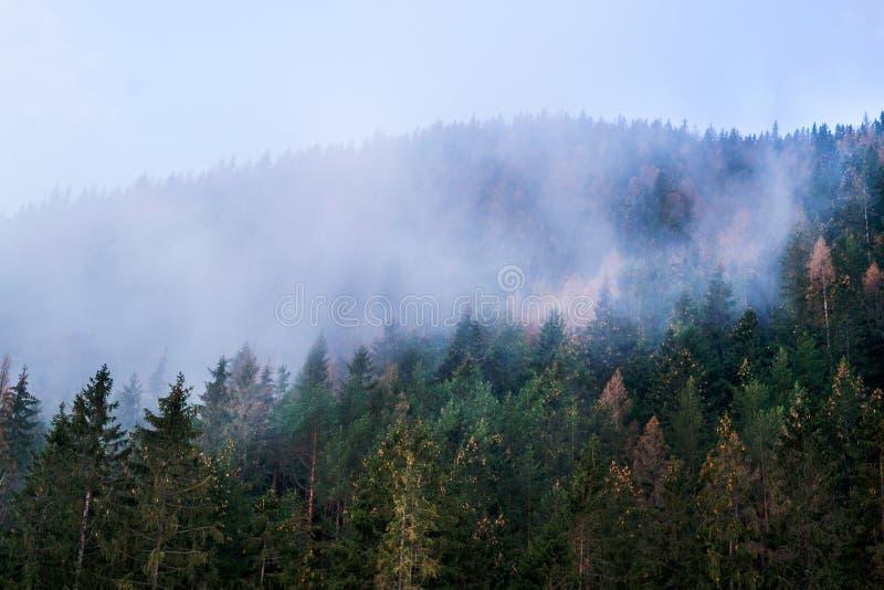 Berg in Slowakije, Hoge Tatras stock afbeelding