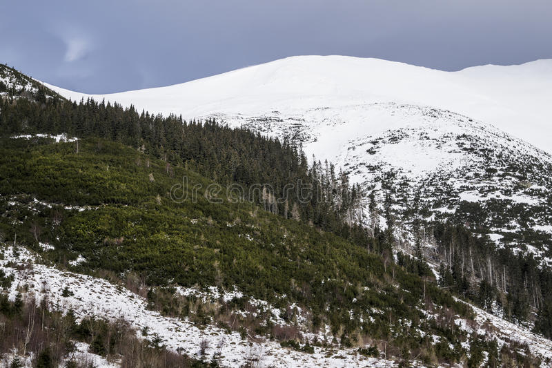 Berg in Slowakije, Hoge Tatras stock foto