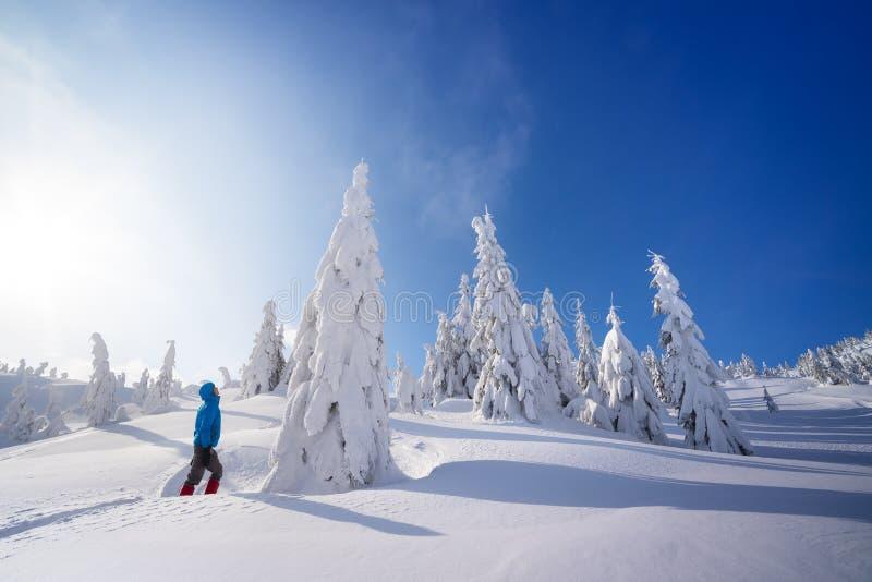 Berg som fotvandrar i vintern arkivbilder