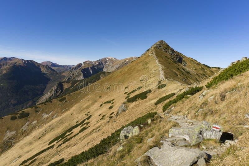 Berg som fotvandrar slingan i västra Tatras royaltyfri foto