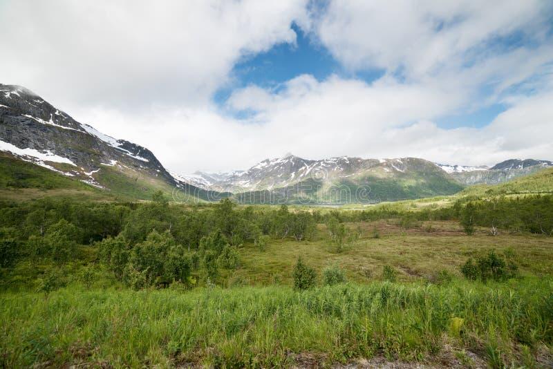 Berg som täckas av snö, blå himmel med moln gr?n ?ng arkivfoto