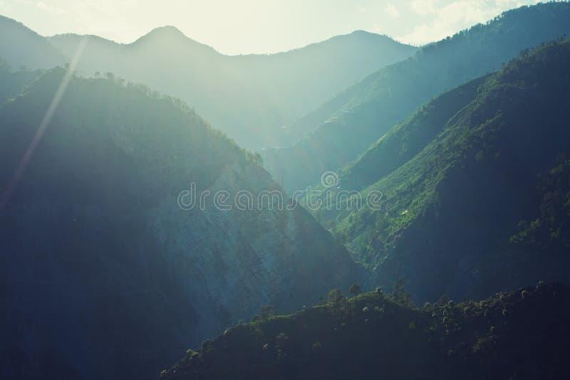 Berg som täckas med den gröna skogen royaltyfri fotografi