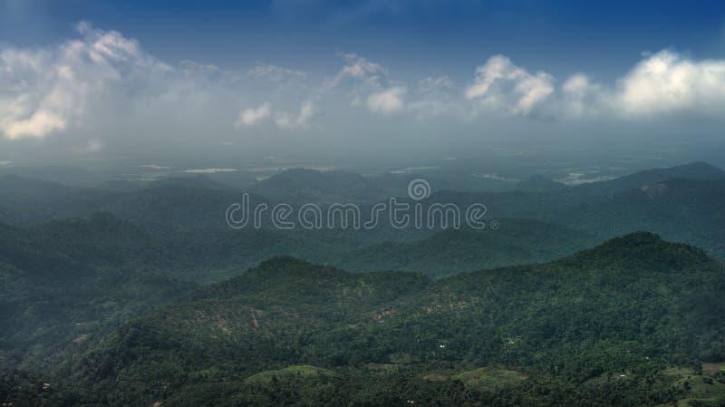 Berg som täckas med den wild skogen fotografering för bildbyråer