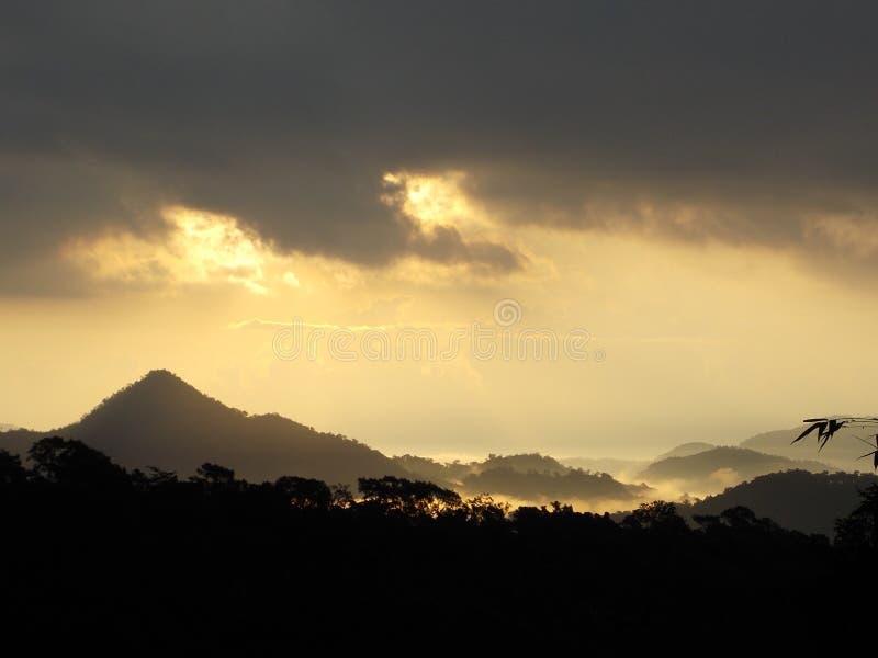 Berg som täckas med dimma och guld- solsken fotografering för bildbyråer