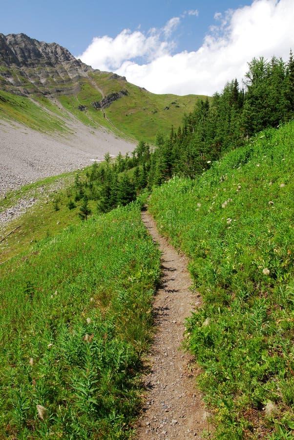 berg som top trailspolning royaltyfri fotografi