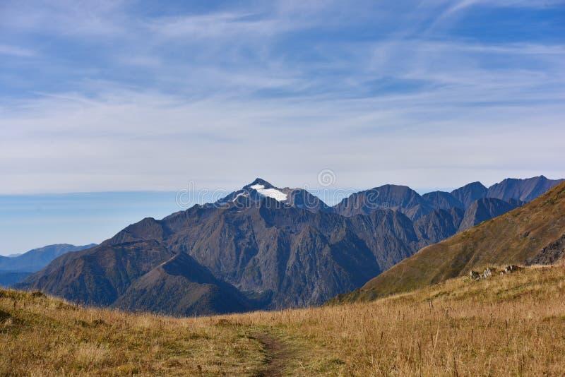 Berg in Sotchi met sneeuw royalty-vrije stock foto