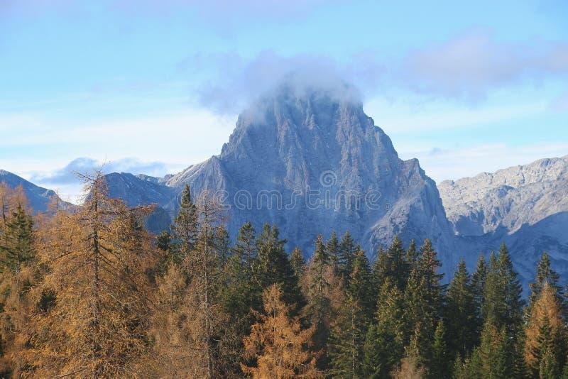 Berg Spitzmauer in de bergketentotalisators Gebirge, en bos in de herfst oostenrijk stock afbeeldingen