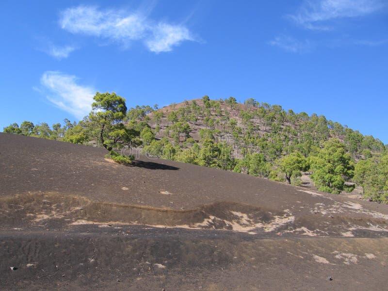 Berg Tenerife, kanariefågelöar, landskap arkivbild