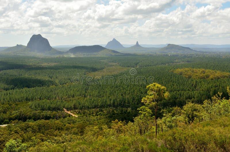 Berg Tibberoowuccum, Tibrogargan, Cooee, Beerwah, Coonowrin arkivbilder