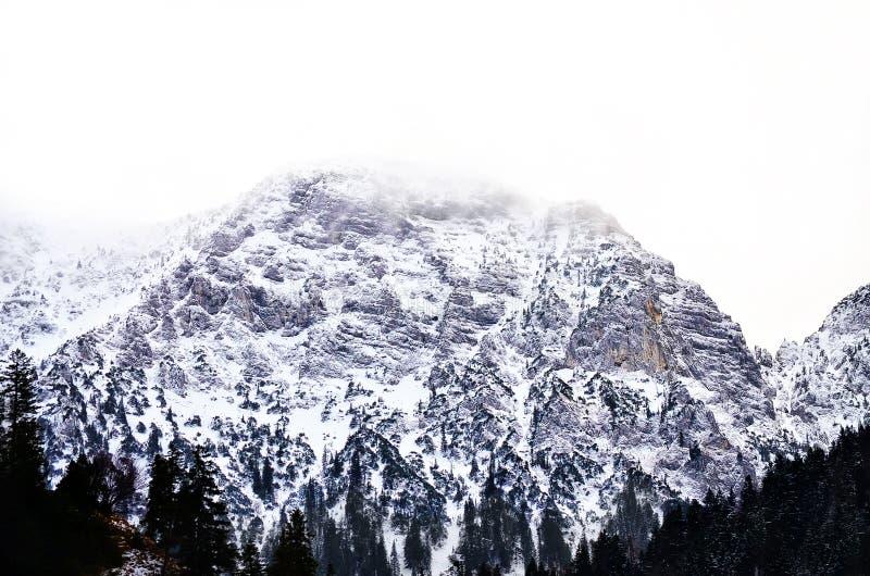 Berg und Schnee lizenzfreies stockbild
