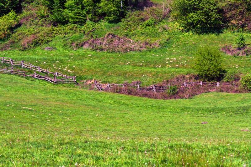 Berg und Tal, Alpenwiese mit Zaun stockbilder