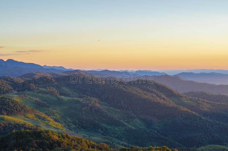 Berg und Wald stockbild