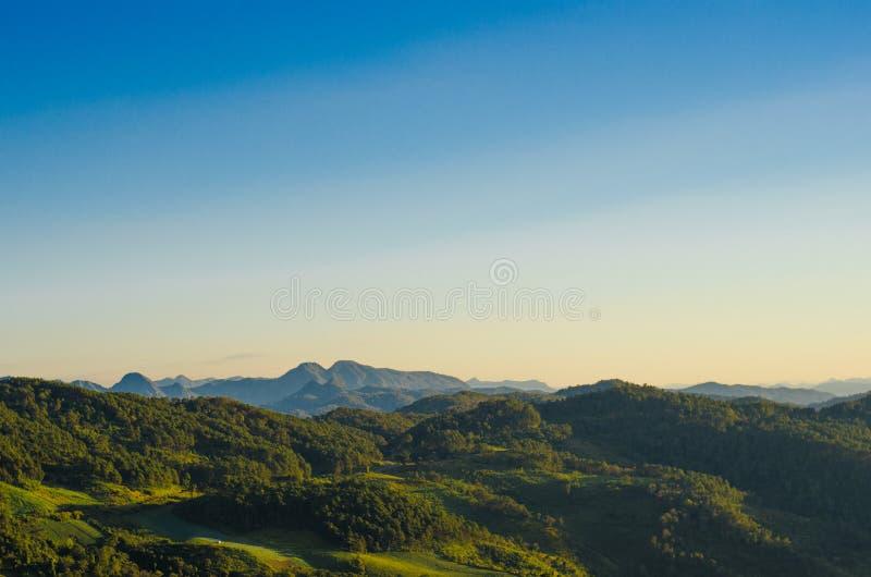 Berg und Wald stockfoto