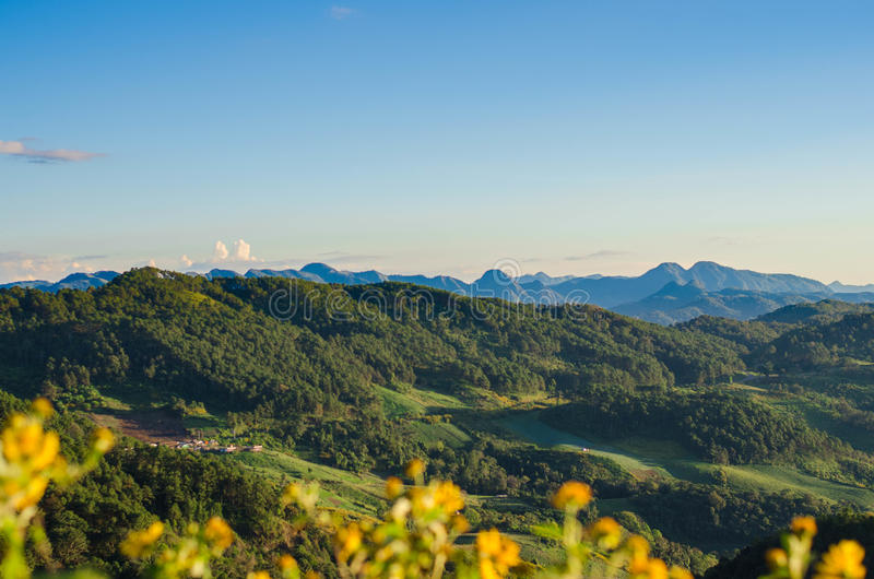 Berg und Wald lizenzfreie stockfotos