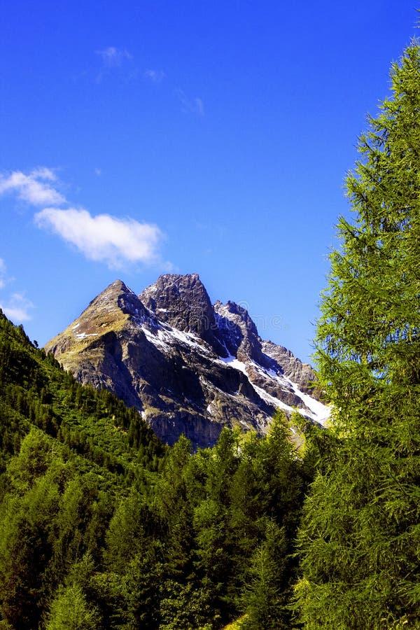 Berg in Valtellina stockbilder