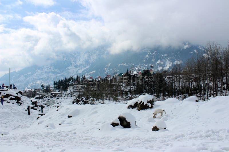 Berg van de Stad van Manali Himachal Pradesh in India stock fotografie