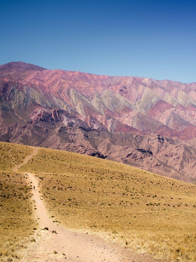 Berg van kleur 14 in Humahuaca, Noordwesten van Argentinië stock foto's