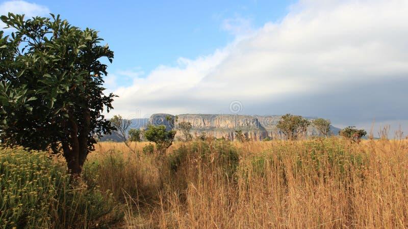 Berg Viwe vid den Blyde flodkanjonen och ängen fotografering för bildbyråer