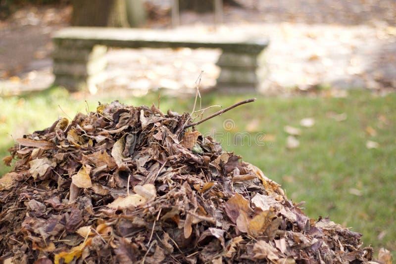 Berg von den trockenen Blättern gruppiert im Herbst in einem Park stockfoto