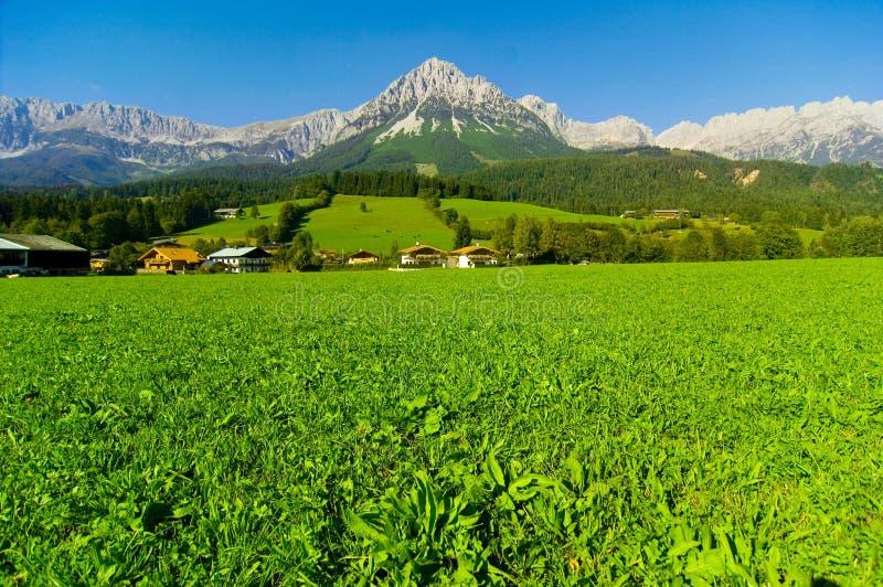 Berg von Kaisergebirge lizenzfreie stockfotos
