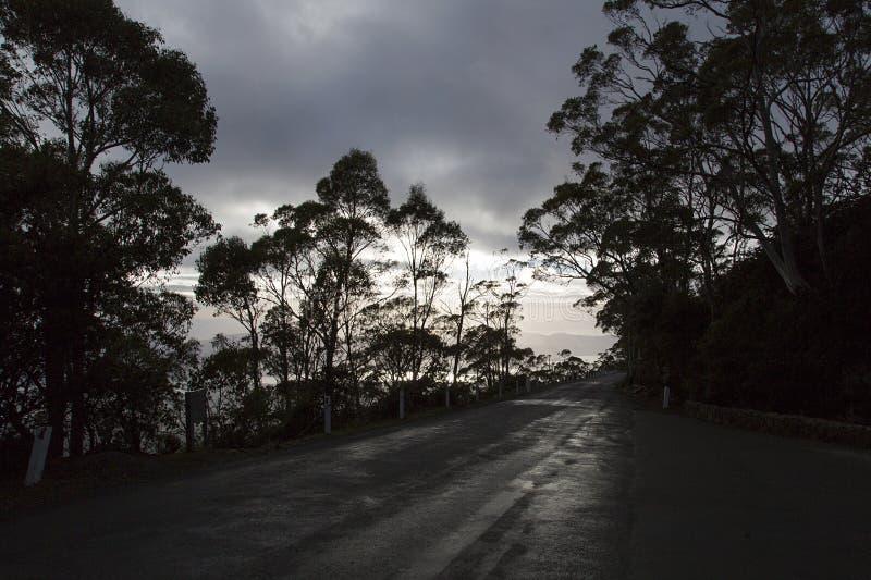 Berg Wellington - Tasmanien stockfotos