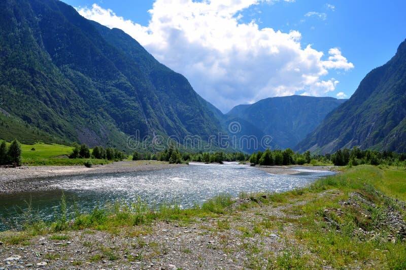 Bergachtige Altai Rusland - de mening van Augustus 2017 van de bergrivier die tussen de hoge Altai-bergen in een heldere zonnige  stock fotografie