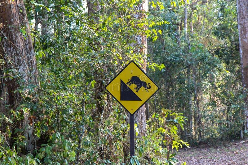 Bergaf aandrijvingsteken, Teken voor bergaf, bergaf Waarschuwingsbord in bos, grappige verkeersteken in wildernis, Olifantssymboo stock foto