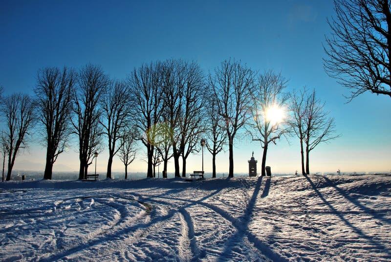 bergamo огораживает зиму стоковое фото