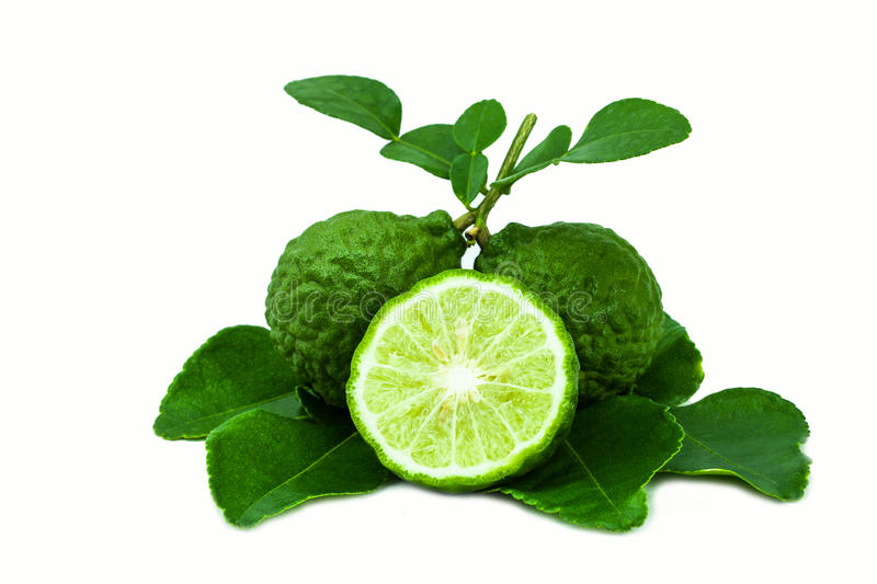 Bergamot. Is a fragrant herb royalty free stock images