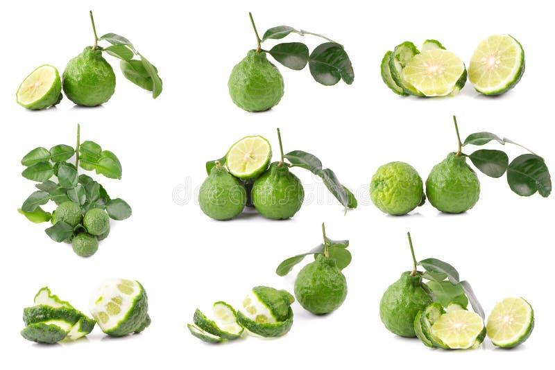 Bergamot fruit Bergamot isolated on white background.  royalty free stock image