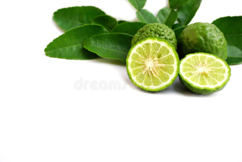 Bergamot fruit and Kaffir lime isolated on a white royalty free stock photography