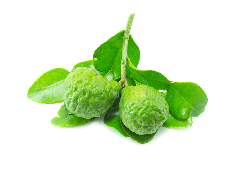 Bergamot fruit with leaf on white background. Herbal royalty free stock photos