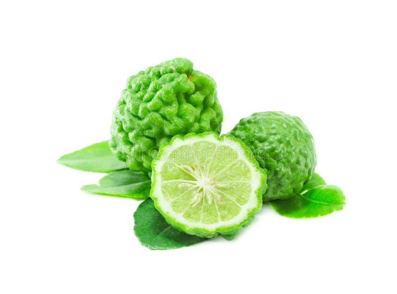 Bergamot fruit with leaf on white background. Herbal royalty free stock images