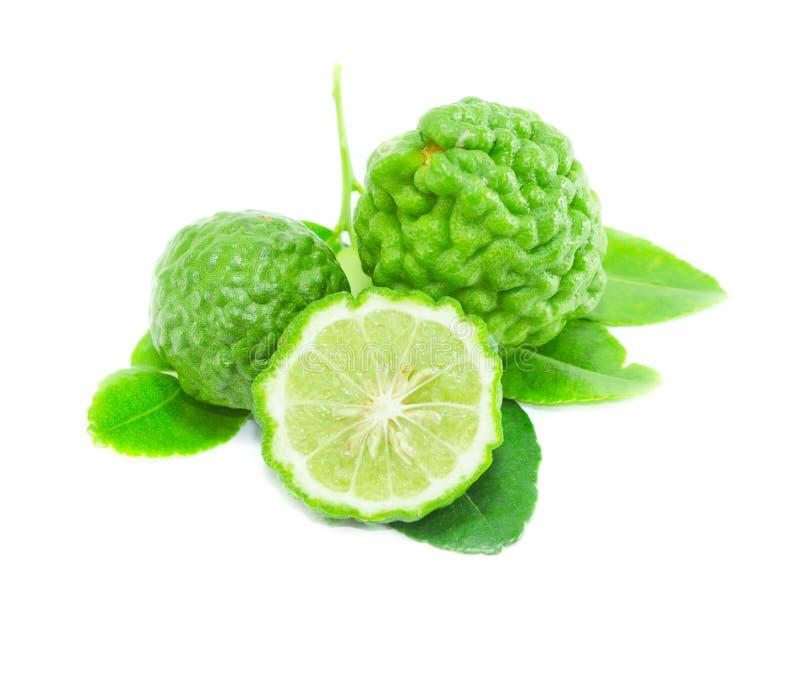 Bergamot fruit with leaf on white background. Herbal stock images
