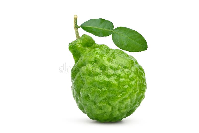 Bergamot fruit with stem and leaf. Isolated on white background. Clipping path royalty free stock image