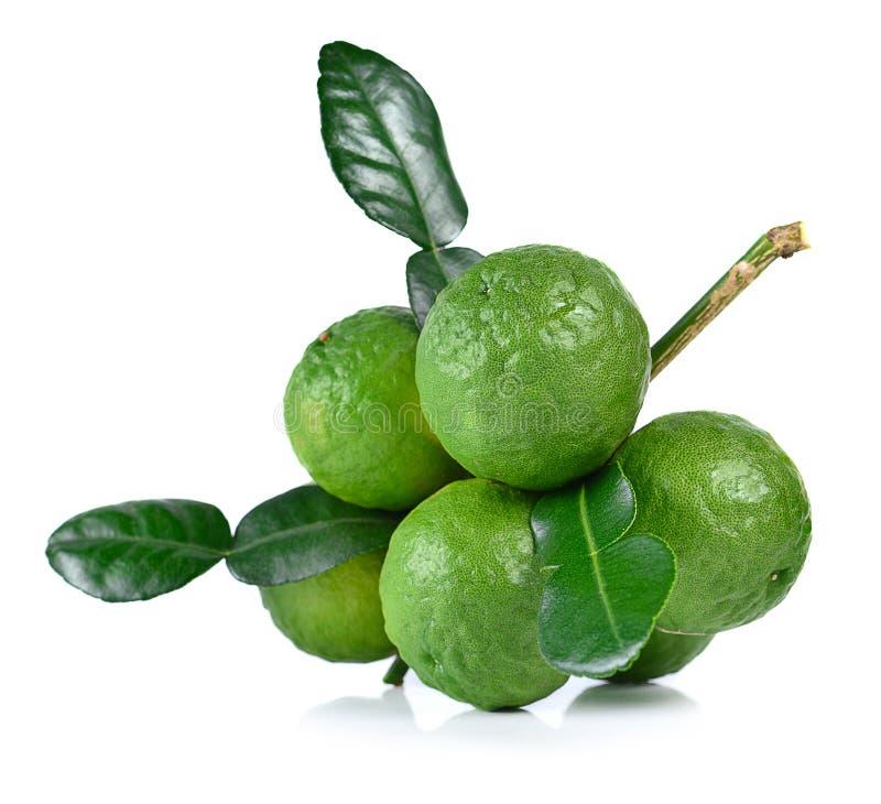 Bergamot fruit on white background.  royalty free stock photos