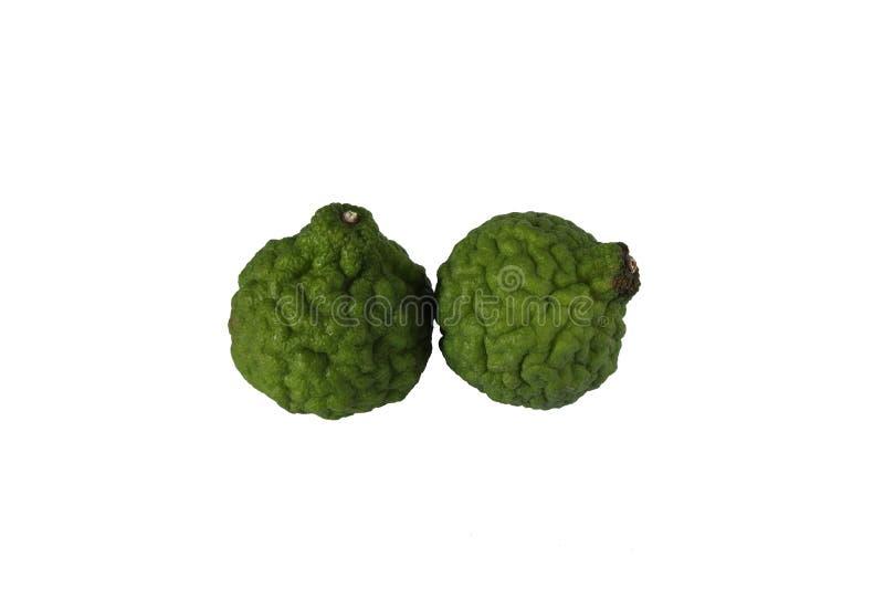 Bergamot. Isolate green fresh bergamot for background stock photo