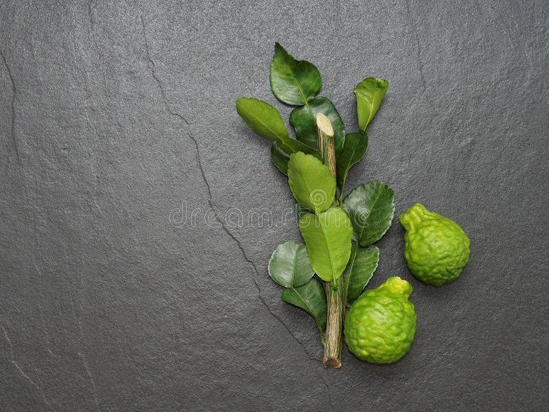 Bergamot, kaffir lime and kaffir lime leaf with branch on dark background royalty free stock photos