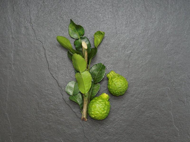 Bergamot, kaffir lime and kaffir lime leaf with branch on dark background stock images