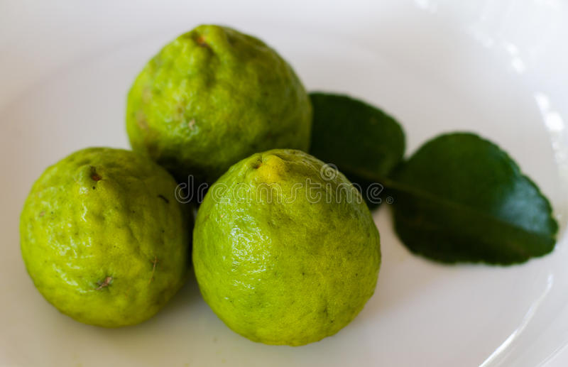 Bergamot lime stock photos