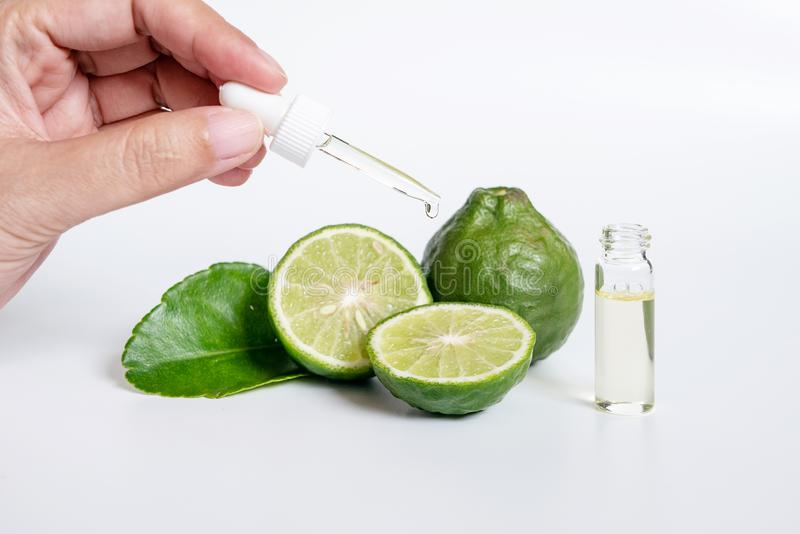 Bergamot serum, organic products made from natural concept. woman hand holding glass dropper for dermatologist testing. Decorate with slide kaffir limes ,kaffir royalty free stock images