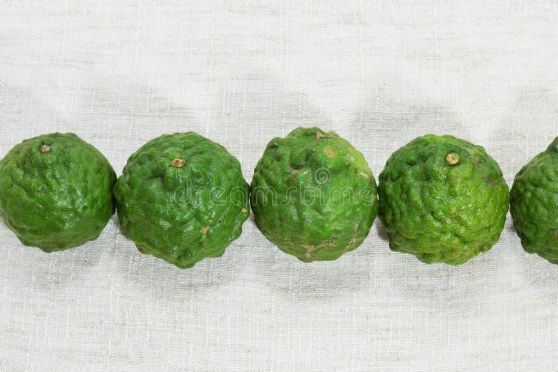 Bergamotfrukt på tyg royaltyfria bilder