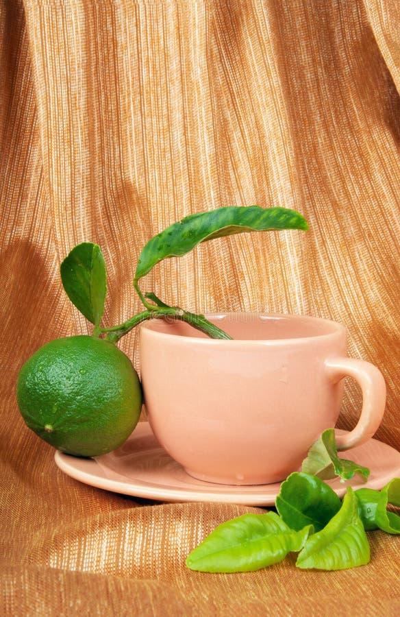 bergamotowa herbata zdjęcie stock